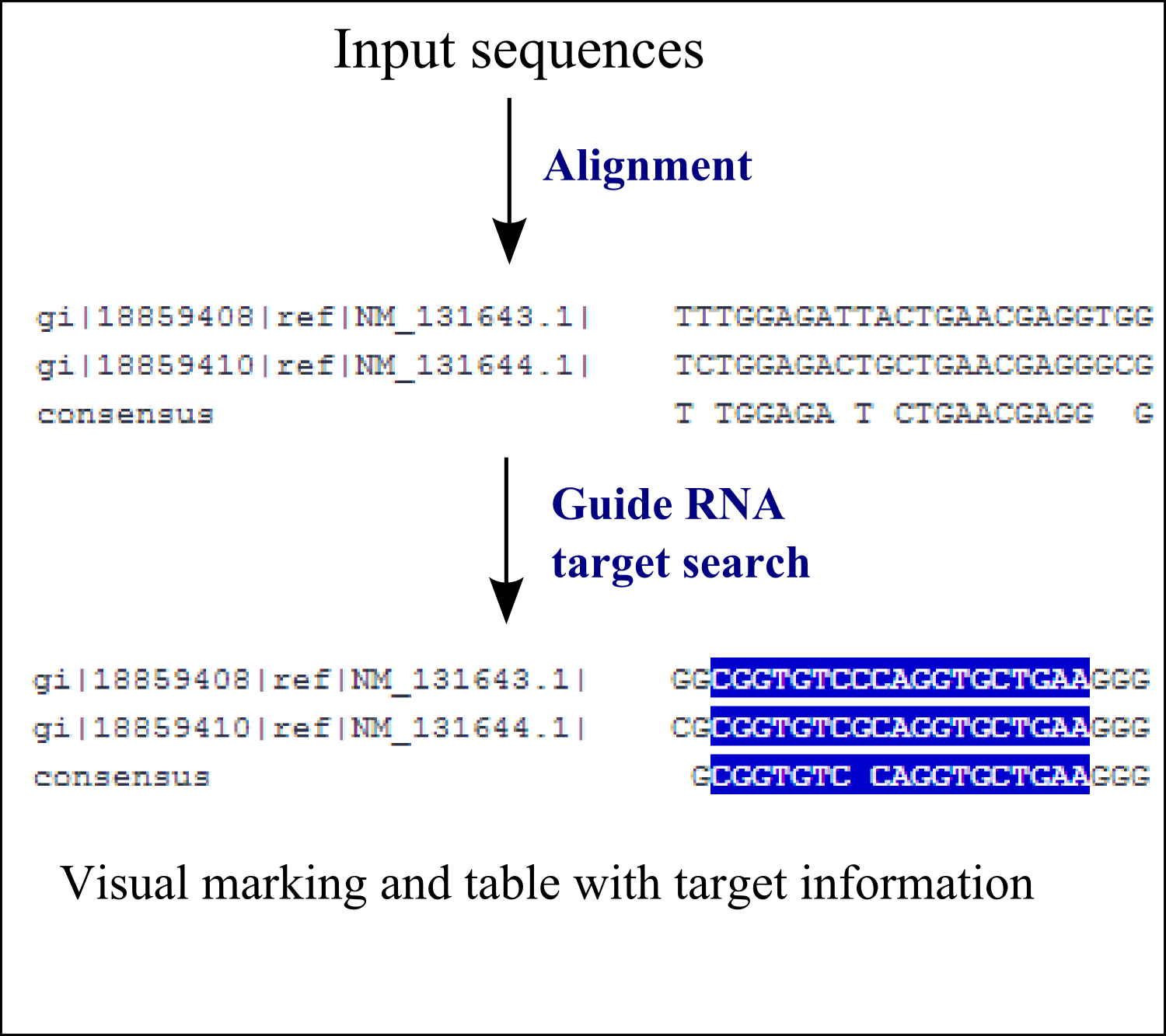 CRISPR search in a multiple sequence alignment
