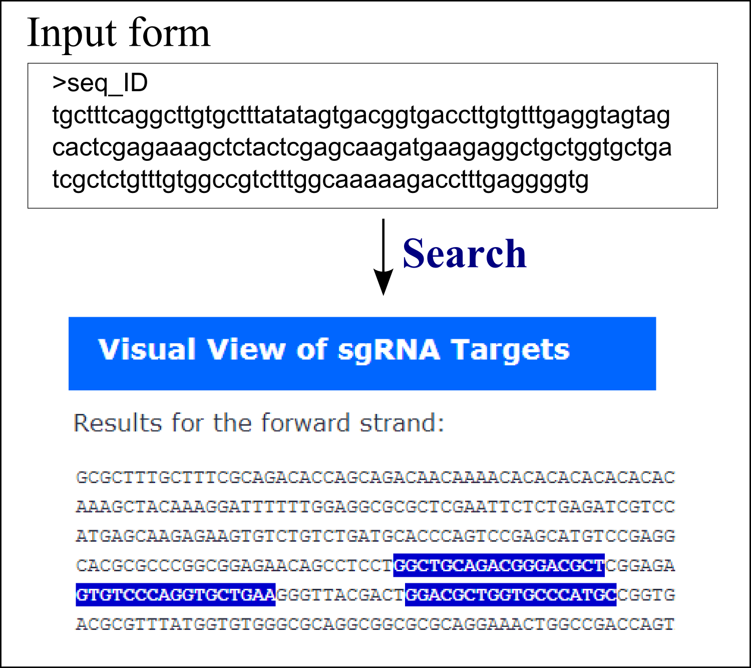 CRISPR search in an input sequence